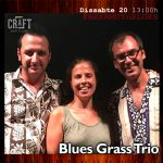 Blues-Grass-Trio